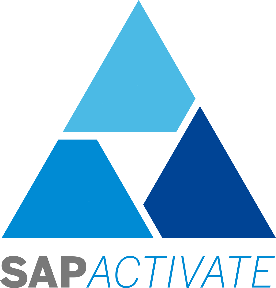 """Sap S/4hana How To """"manage Your Solution"""" With Sap - Sap Activate Methodology Clipart (1128x1175), Png Download"""