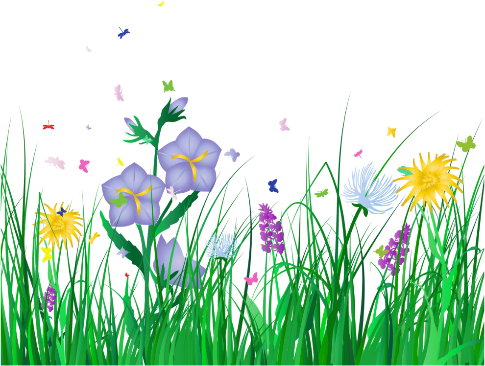 Overlay Sticker - Spring Flowers Transparent Background Clipart (1024x790), Png Download