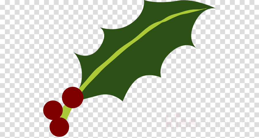Download Holly Leaf Png Clipart Common Holly Yaupon - Question Marks No Background Transparent Png (900x480), Png Download