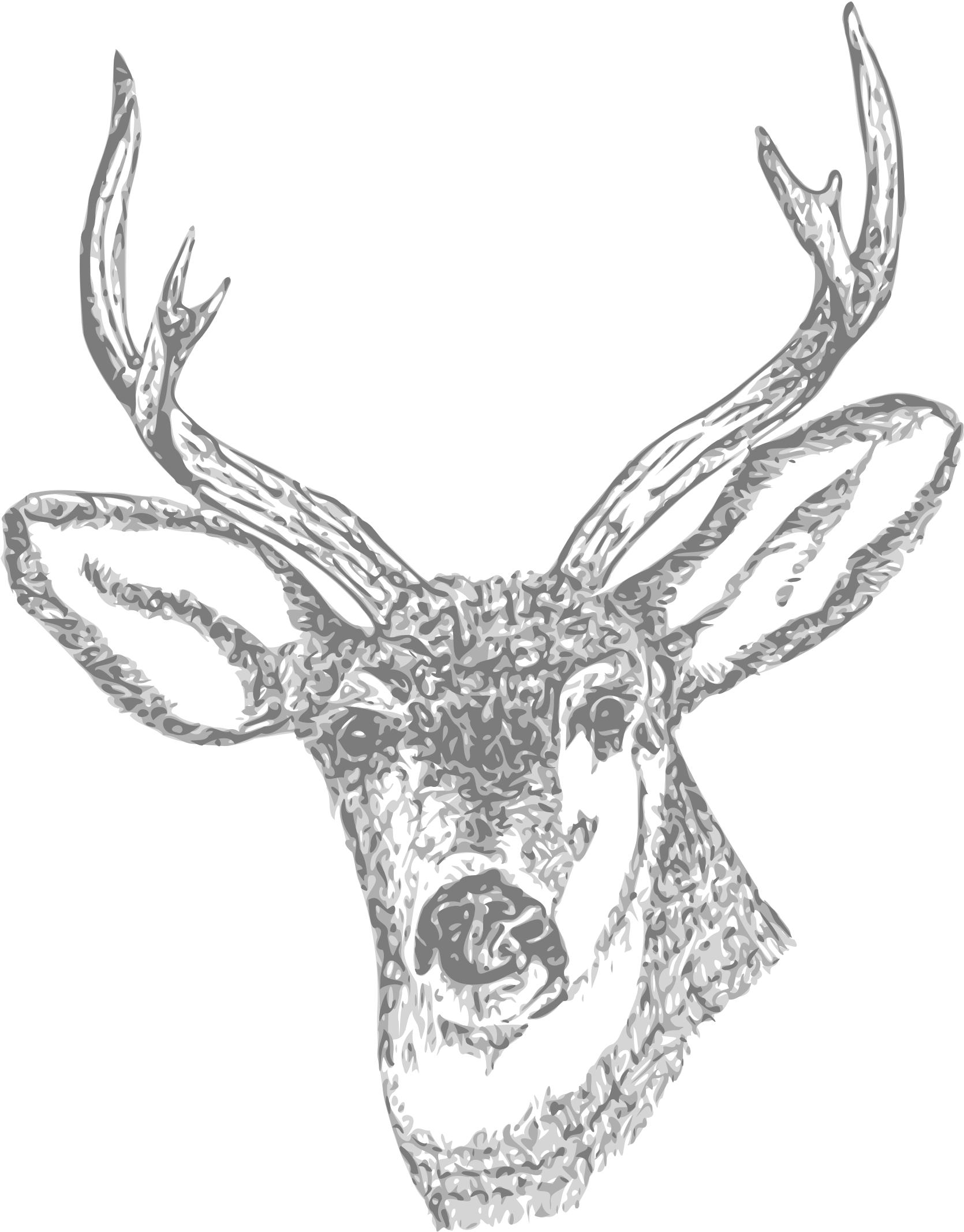 Download Deer Pencil Curtain Free - Deer Skull Tattoo ...