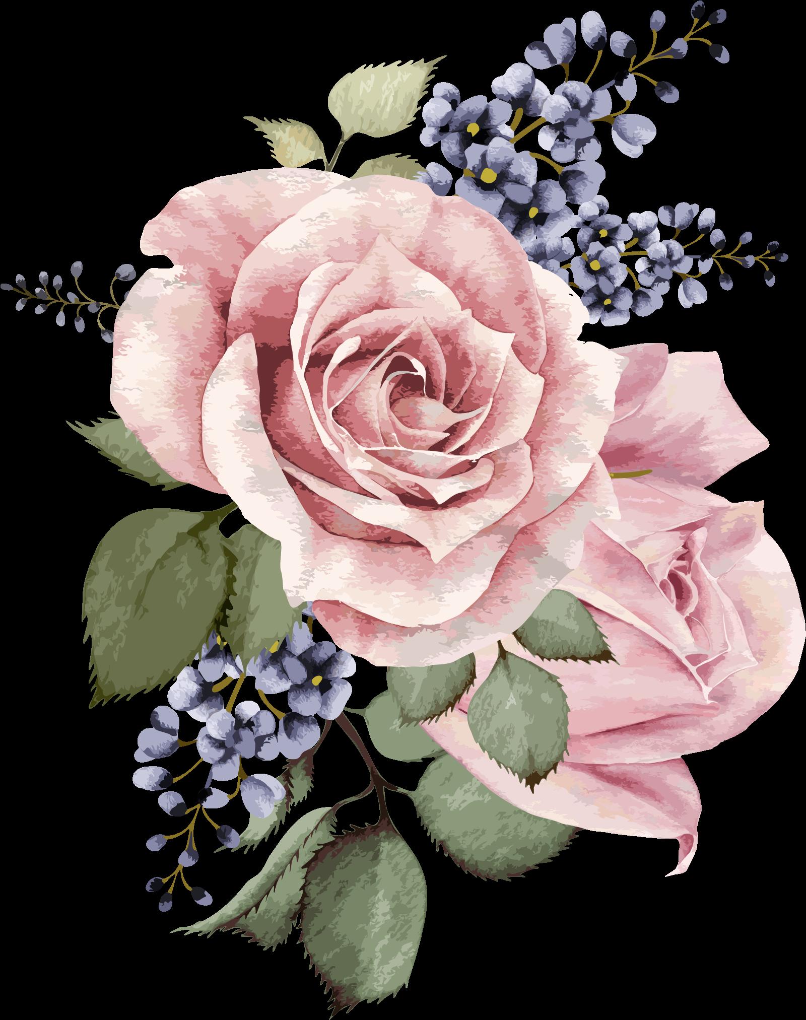 Botanical Illustration, Illustration Art, Gouache, - Transparent Background Watercolor Flowers Clipart (2367x2350), Png Download