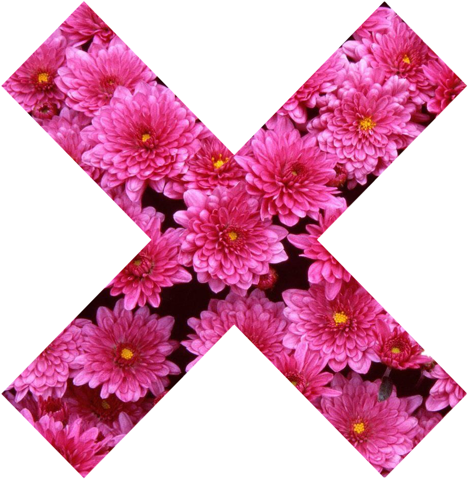 X X Cross Flower Pink Girly Pink Nature Collor Tumblr Flowers