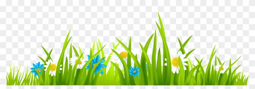 View Grass Vector Png