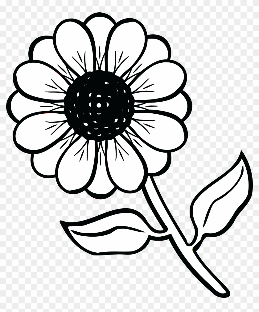 Free Clipart Of A Daisy Flower Flower Picture Black And White Png Download 102317 Pikpng