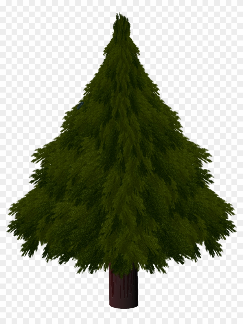 Drawn Pine Tree Texture Drawing A Realistic Christmas Tree Clipart 1023639 Pikpng
