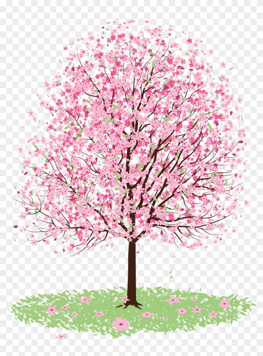 Freeuse Stock Cherry Blossom Tree Clipart - Blossom Tree Vector Free - Png Download #1026182