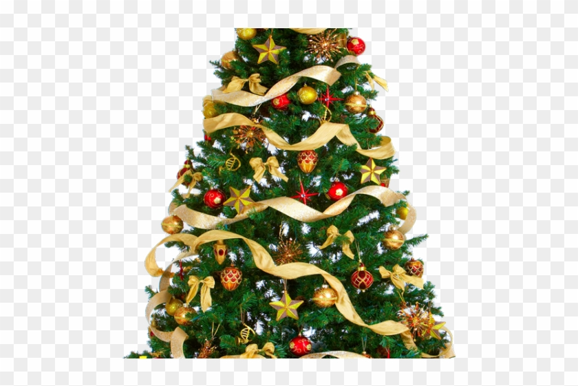 Christmas Tree Png Transparent Images - Christmas Tree Free Download Clipart #1037721