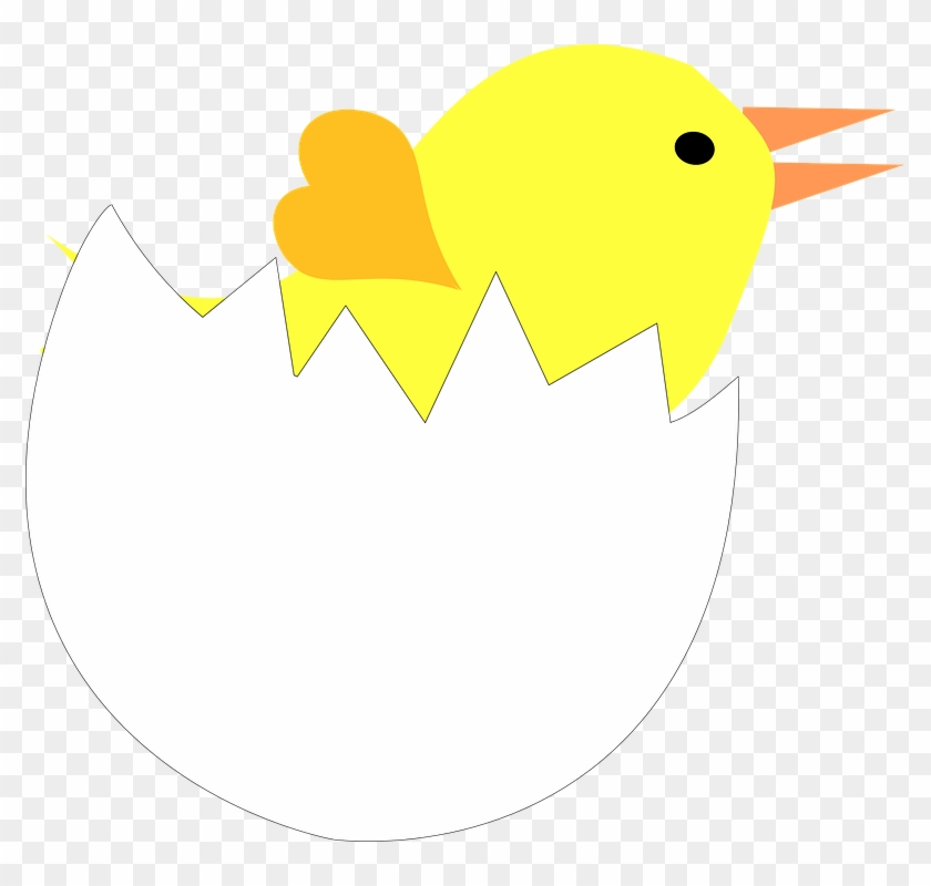 Cracked Egg Shell Clipart - Pintinho Na Casca Do Ovo - Png Download #1088921
