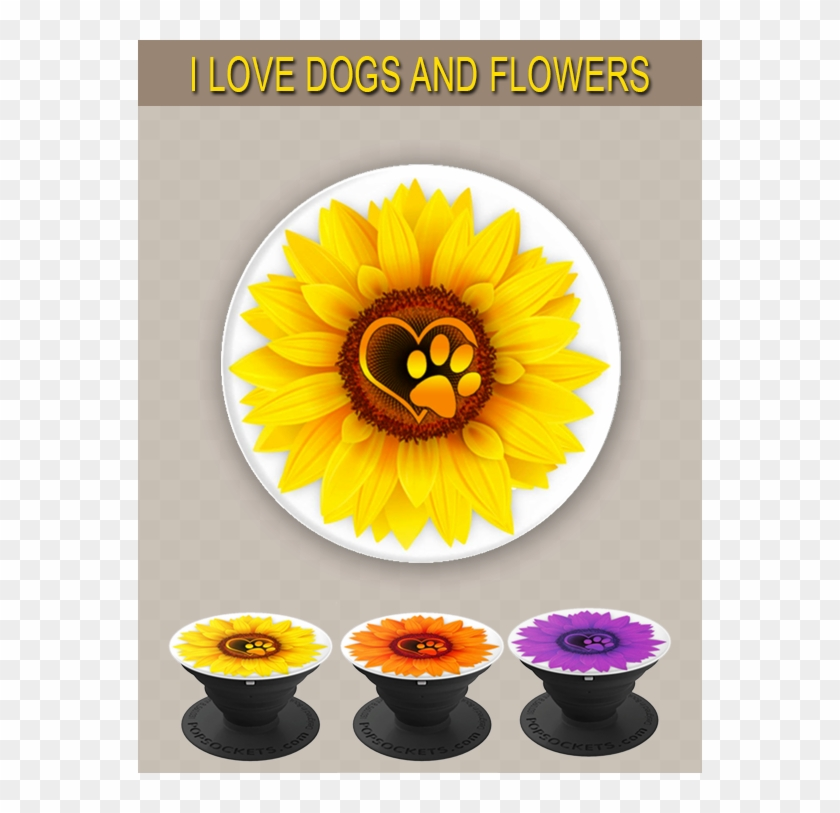 Super Cute Pop Socket For Girls That Love Flowers And Sunflower