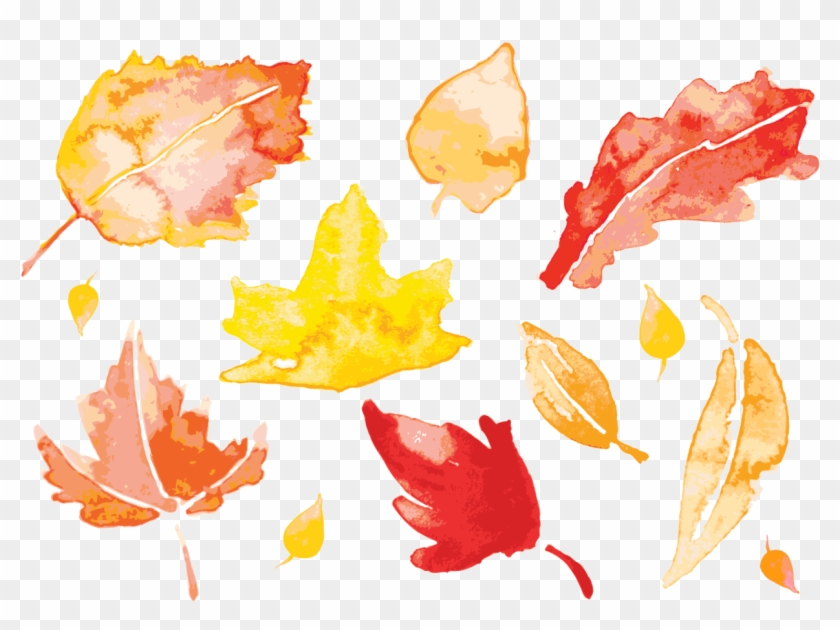 Banner Autumn Leaves Painting Leaf Transprent Png Free - Watercolor Fall Leaves Vector Clipart #1151914