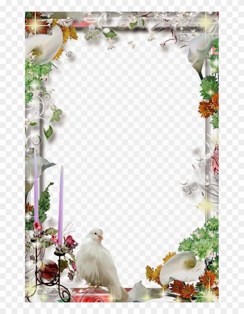 Wedding Frame Png Transparent File Wedding Frames Hd Png Clipart 1161556 Pikpng