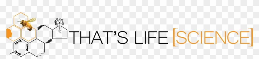 Thats Life Science An Interdisciplinary Life Science - Calligraphy Clipart #1250394