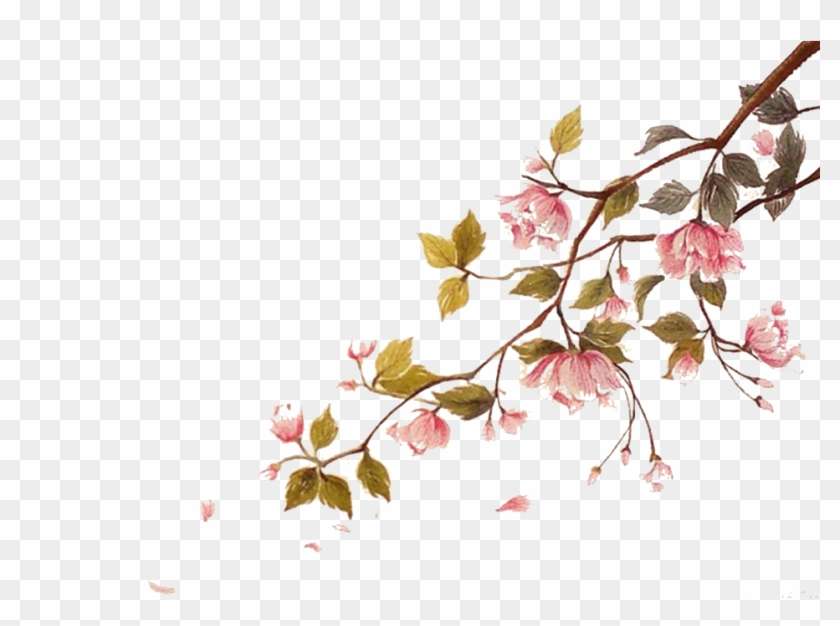 Cherry Blossom Watercolor Painting Ci - Water Color Cherry Blossom Png Clipart #1268106