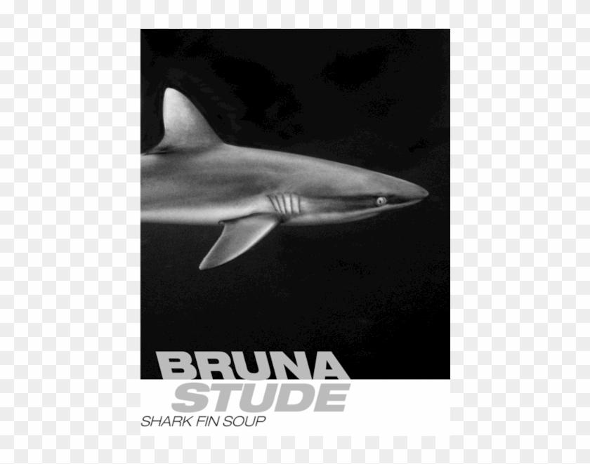 Ocean Meets Art - Great White Shark Clipart #1305361