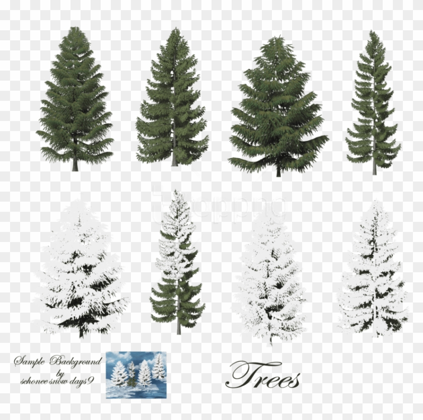 Free Png Download Fir-tree Free Png Images Background - Snow On Trees Photoshop Clipart #1314107