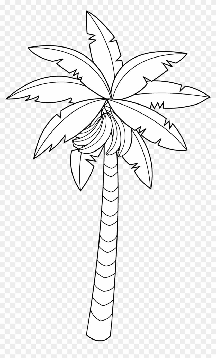 28 Collection Of Banana Tree Clipart Black And White - Banana Tree Line Drawing - Png Download #1318144