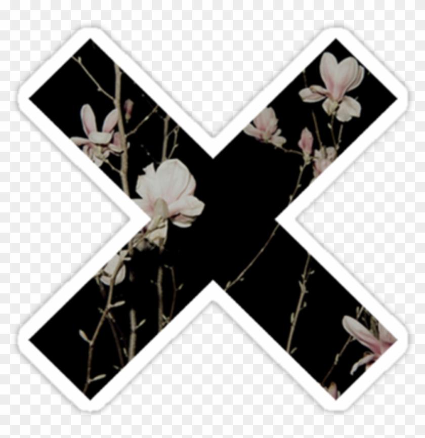 #cross #overlay #png #x #edit #tumblr #flower #munloit - Hipster Sticker Tumblr Png Clipart #1320055