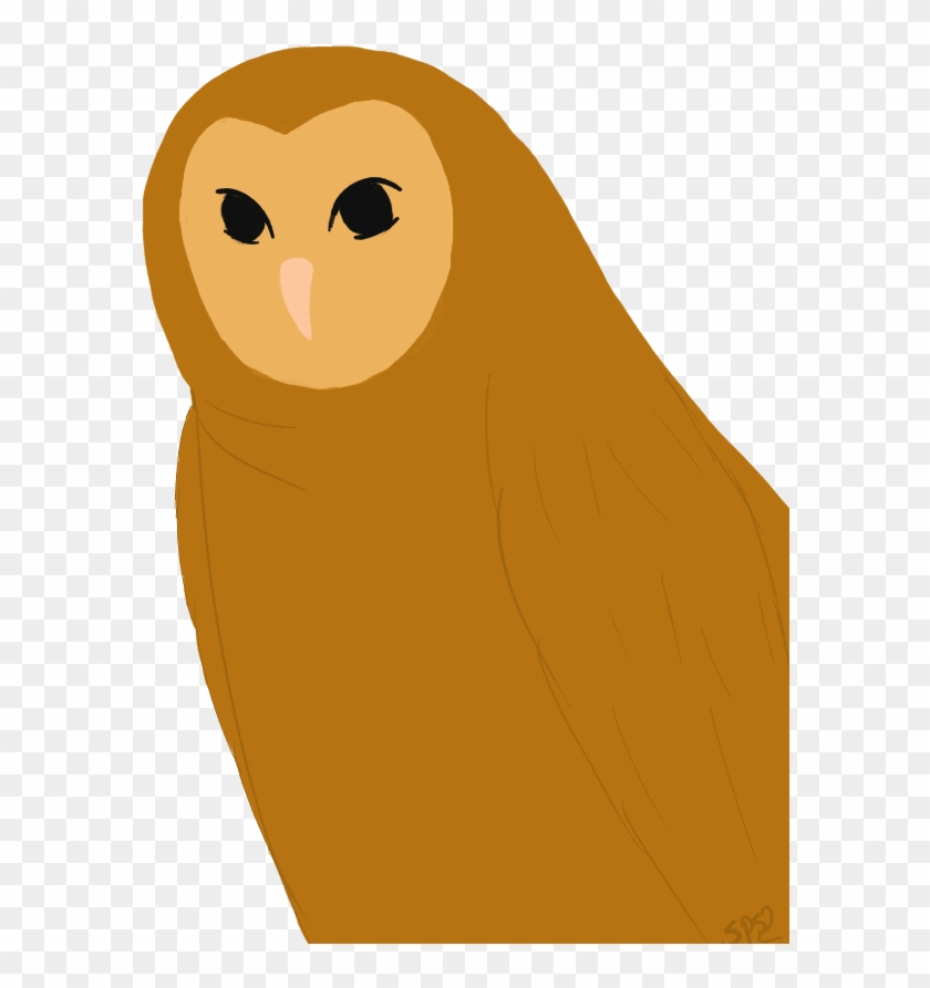 Ovo Owl Png - Barn Owl Clipart #1345659
