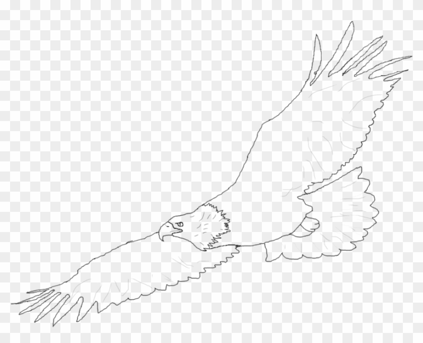 Simple Drawing At Getdrawings Com Free For Sketch Clipart