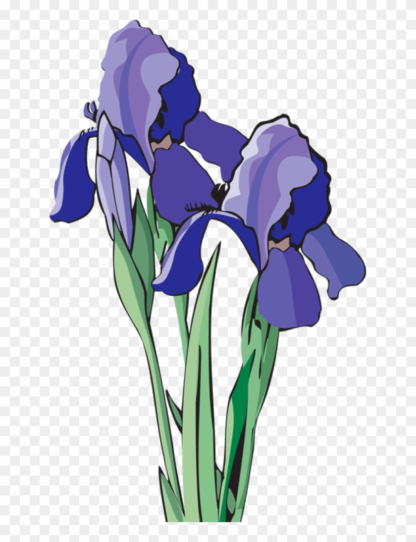 Web Design & Development - Clip Art Purple Iris Art - Png Download #1413551