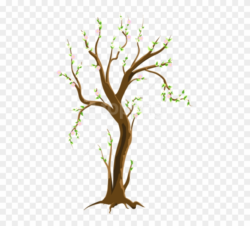 Free Png Download Spring Treepicture Png Images Background - Tree In Spring Clipart Transparent Png #1415806