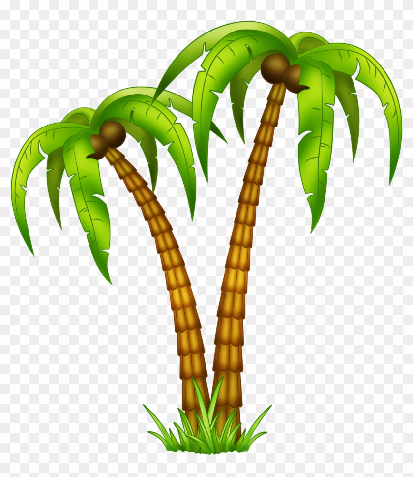 Dibujos Palmeras Png - Coconut Tree Drawing Png Clipart #1426009