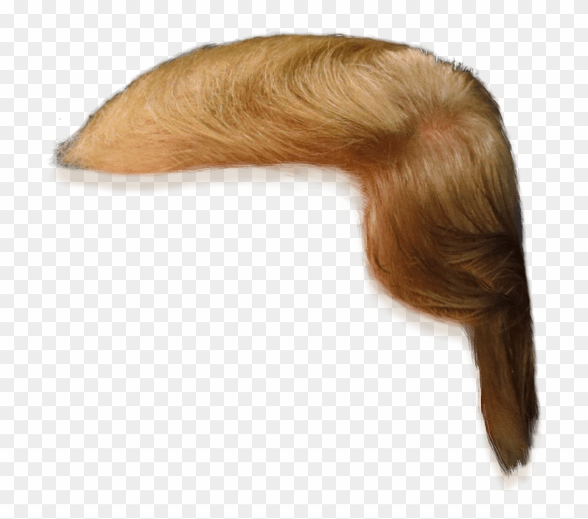 Donald Trump Hair Clip Art - Png Download #1443854