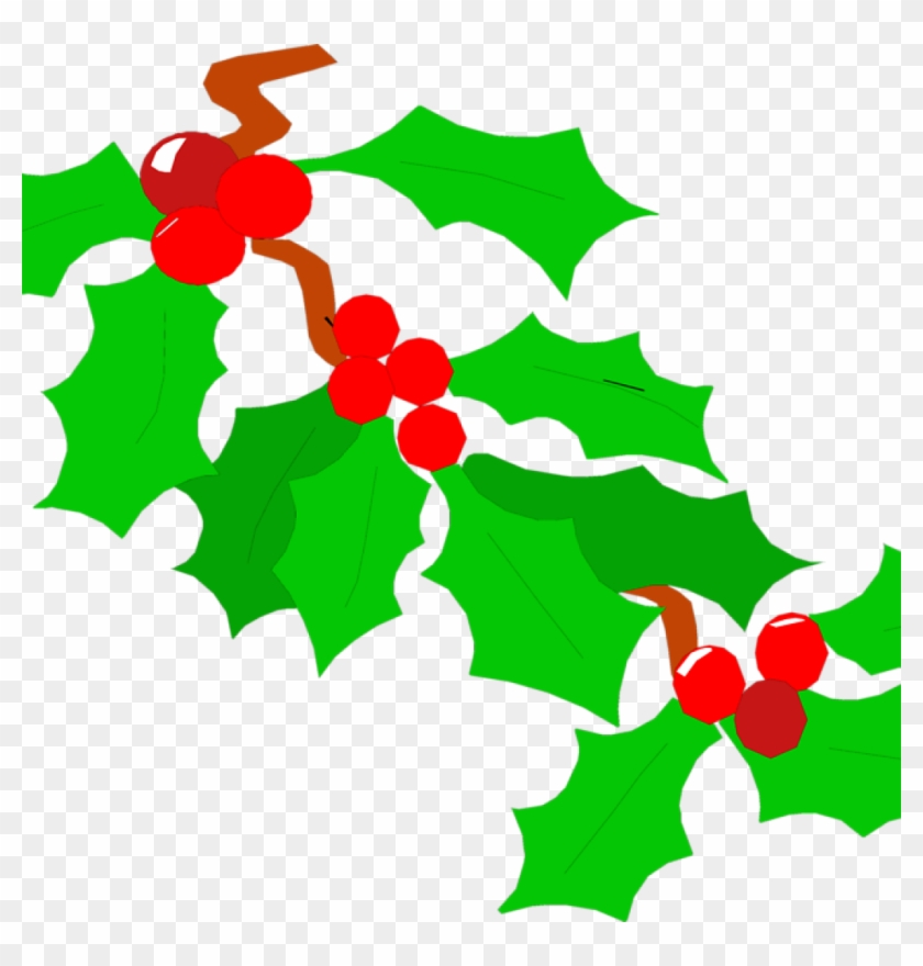 Holly Images Free Holly Free Stock Photo Illustration - Holly Clipart No Background - Png Download #1452907
