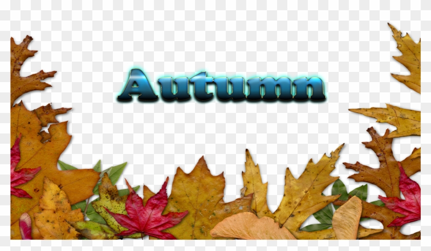 Autumn Leaves Free Download Png - Autumn Leaves Border Png Transparent Clipart #1497884