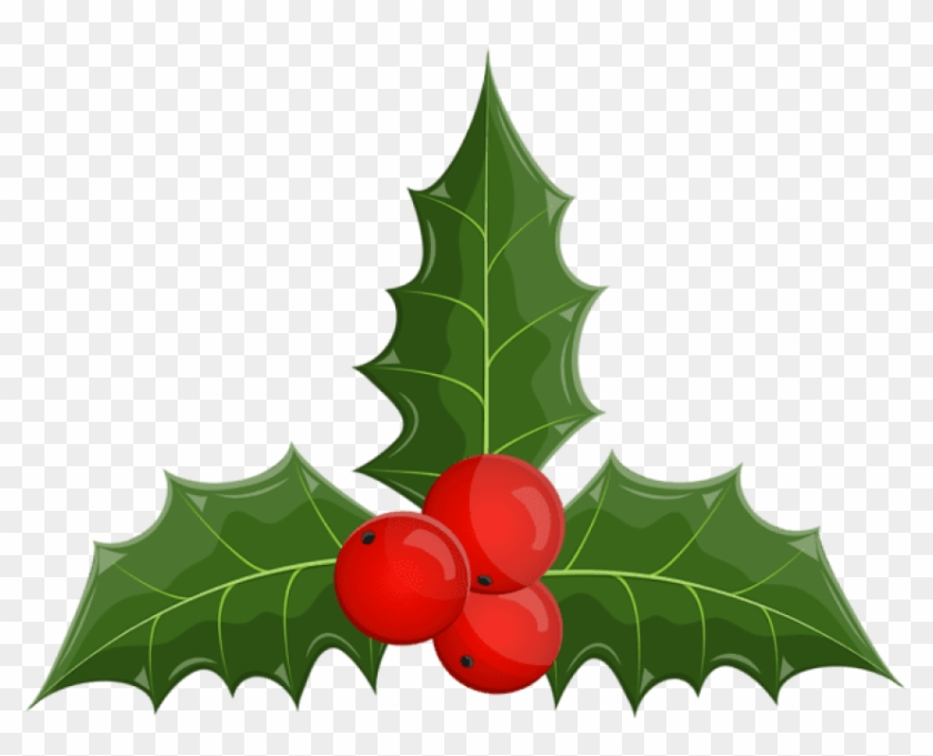 Christmas Holly Mistletoe Png - American Holly Clipart #154487