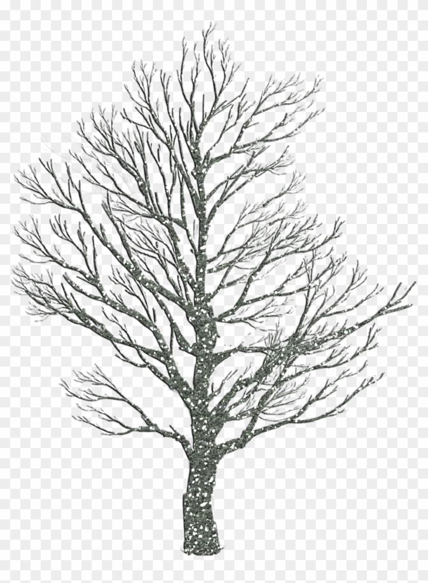 Winter tree clipart 2 | Nice clip art