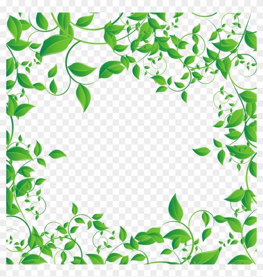 Tea Leaf Png - Green Tea Leaf Png, Cliparts & Cartoons - Jing.fm
