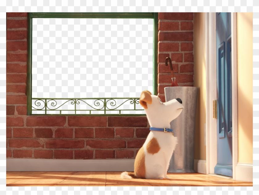 The Secret Life Of Pets Kids Transparent Png Frame - Secret Life Of Pet Hd Clipart #1547730
