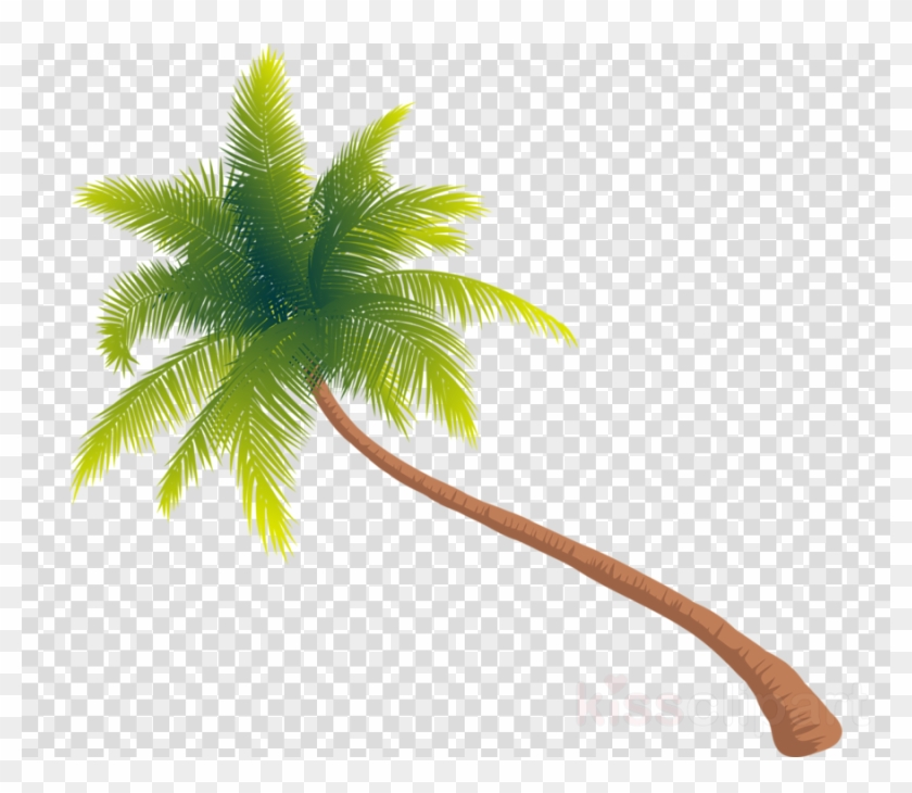 Download Tree Png Gif Clipart Palm Trees Clip Art Tree - Transparent Palm Tree Gif #1573714