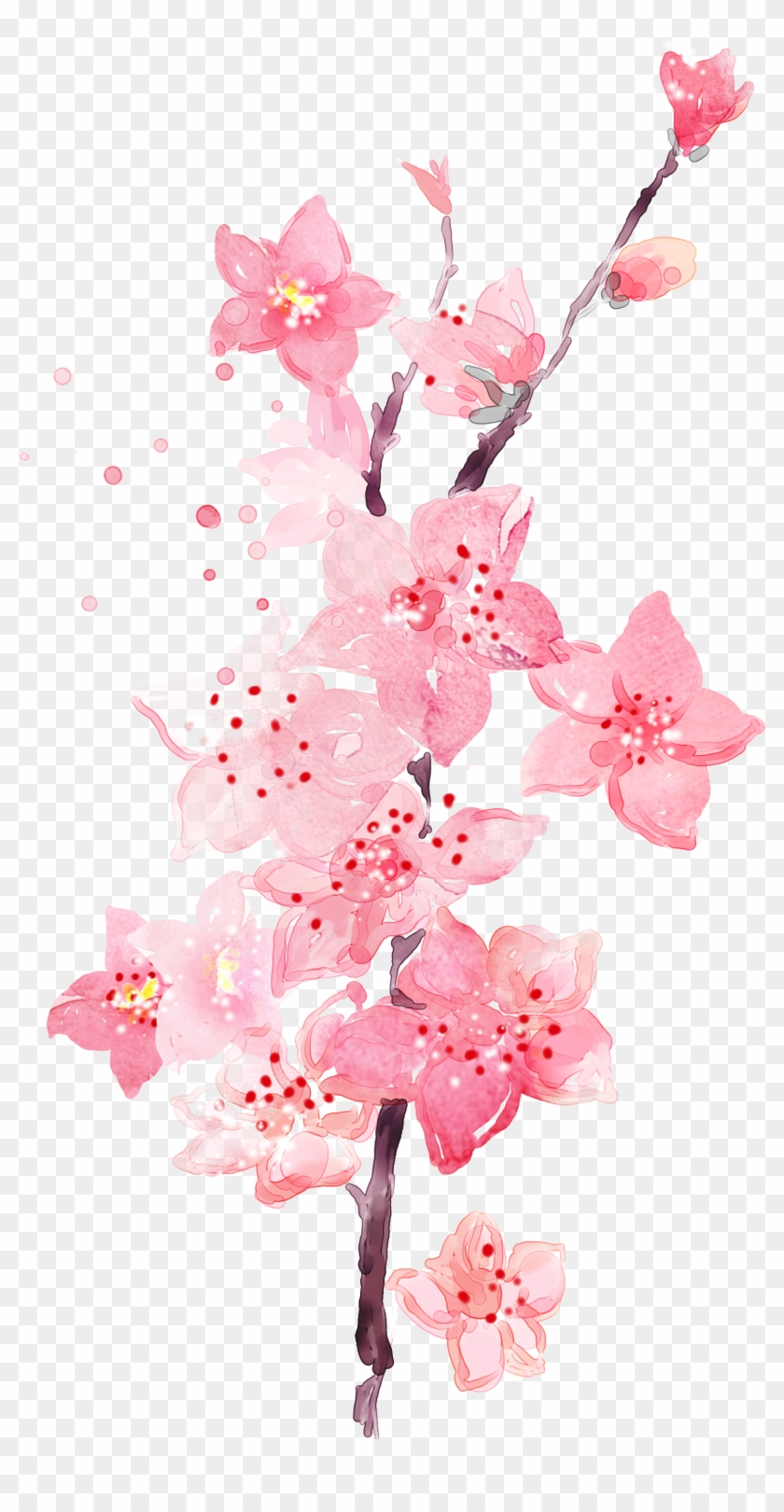 Floral Wallpaper Watercolor Watercolor Peach Blossom Flower