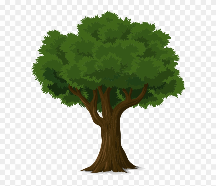 Tree Forest, Trees To Plant, Tree Wall Art, Tree Art, - Png Tree Illustration Clipart #1653348