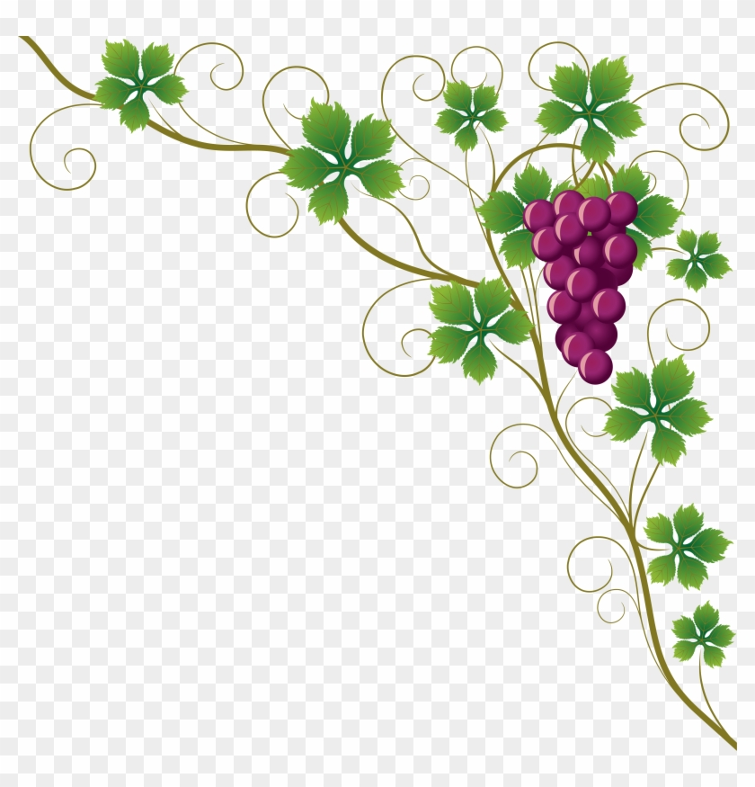 Common Grape Vine Grape Leaves Wine Clip Art - Design Border Of Chart - Png Download #1685823