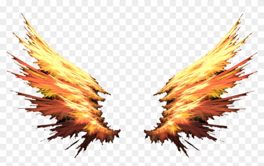 Flame Wings Png Fire Wings Transparent Background Clipart 170407 Pikpng