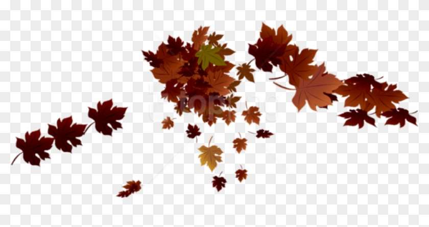 Free Png Transparent Red Fall Leaves Png Images Transparent - Red Fall Leaves Png Clipart #1713027