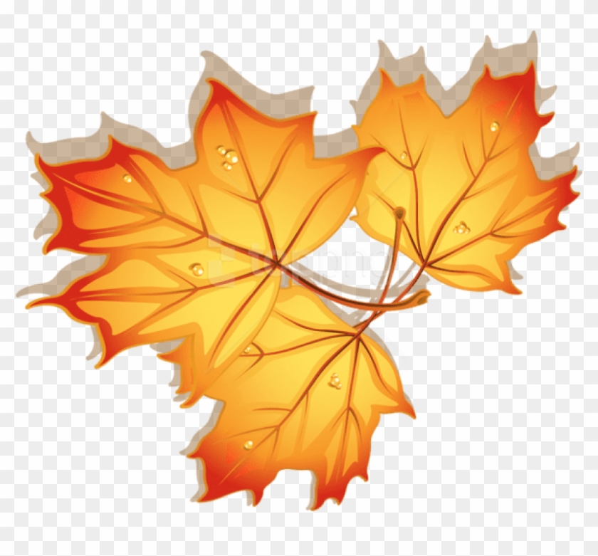 Free Png Download Autumn Leaves Clipart Png Photo Png - Autumn Leaves Dibujo Transparent Png #1713195