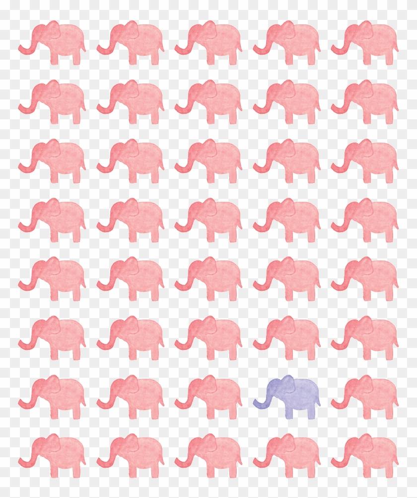 Pizza Wallpaper Tumblr Whatsapp Wallpaper Elephant Clipart