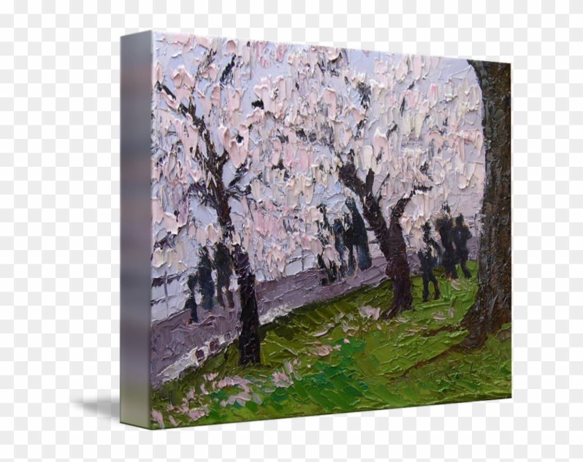 Landscape Drawing Cherry Blossom - Canoe Birch Clipart #1754276