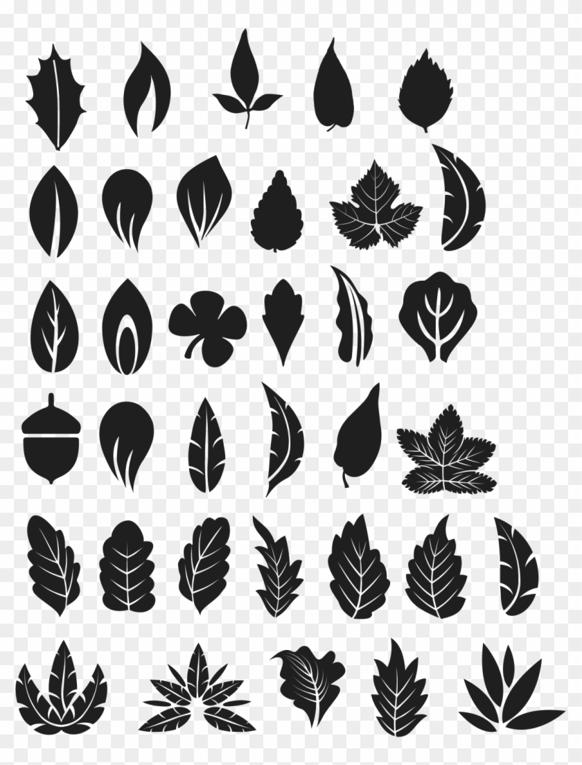 Tree Leaves Vector Free Tree Leaf Vector Png Clipart 1792506 Pikpng