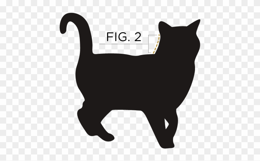 Measure From The Base Of Your Cat's Ears To Their Shoulder - No Photo Available Cat Clipart #182053