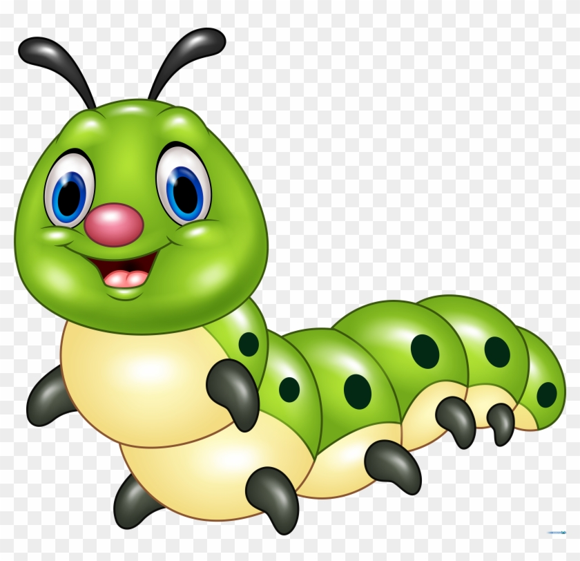 Drawing Cartoon Insects Transprent Png Free Caterpillar Image