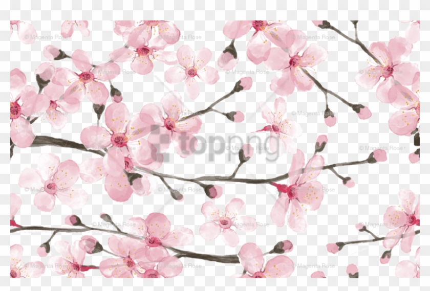 Free Png Download Cherry Blossom Watercolor Png Images - Cherry Blossom Pattern Fabric Clipart #1828187