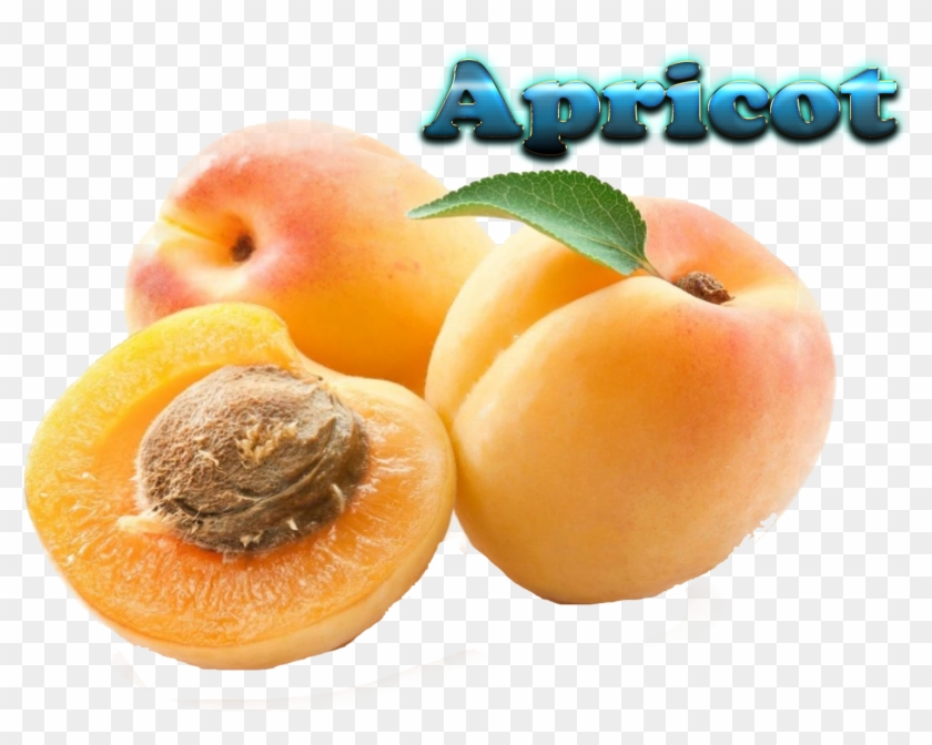 Apricot Fruit In Tamil Clipart #1851003