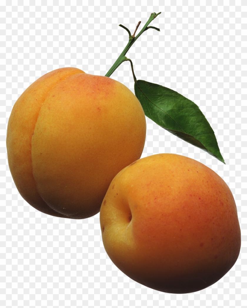 Apricots Png Clipart Picture - Apricots Clipart Transparent Png #1851045