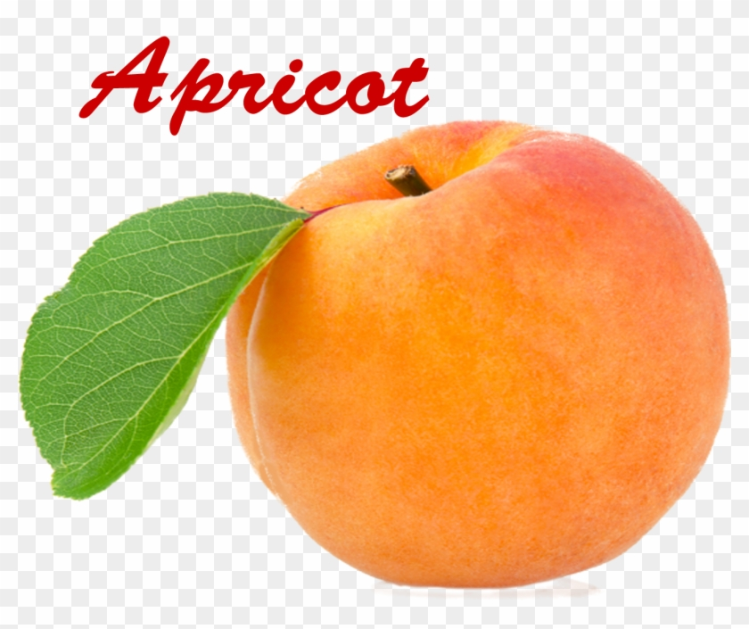 Apricot Png - Apricot Clipart #1851119
