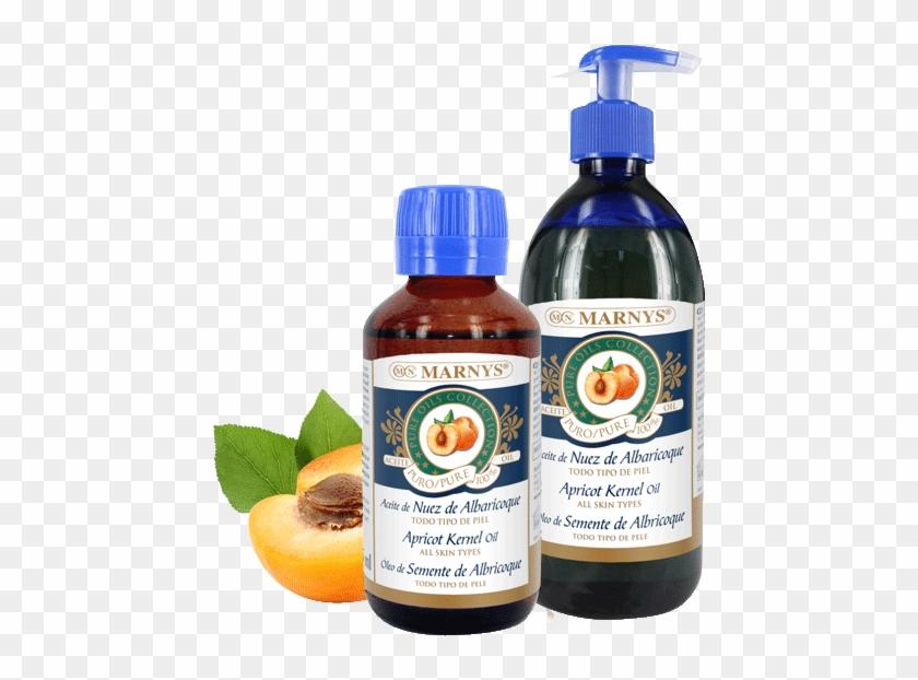 Apricot Kernel Oil - Plastic Bottle Clipart #1851485
